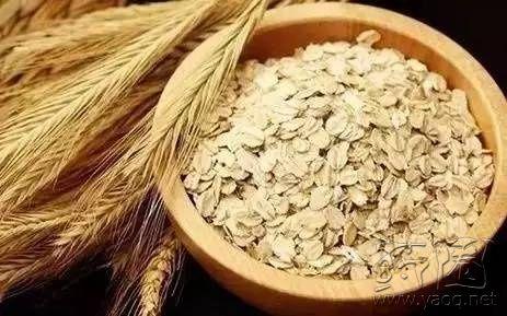 五谷杂粮,燕麦称王 ,燕麦的创意吃法千万别错过 娱乐灌水
